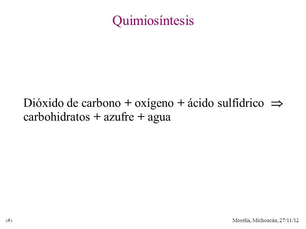 Morelia, Michoacán, 27/11/12 18 Quimiosíntesis Dióxido de carbono + oxígeno + ácido sulfídrico carbohidratos + azufre + agua