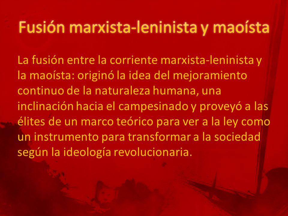 La fusión entre la corriente marxista-leninista y la maoísta: originó la idea del mejoramiento continuo de la naturaleza humana, una inclinación hacia el campesinado y proveyó a las élites de un marco teórico para ver a la ley como un instrumento para transformar a la sociedad según la ideología revolucionaria.