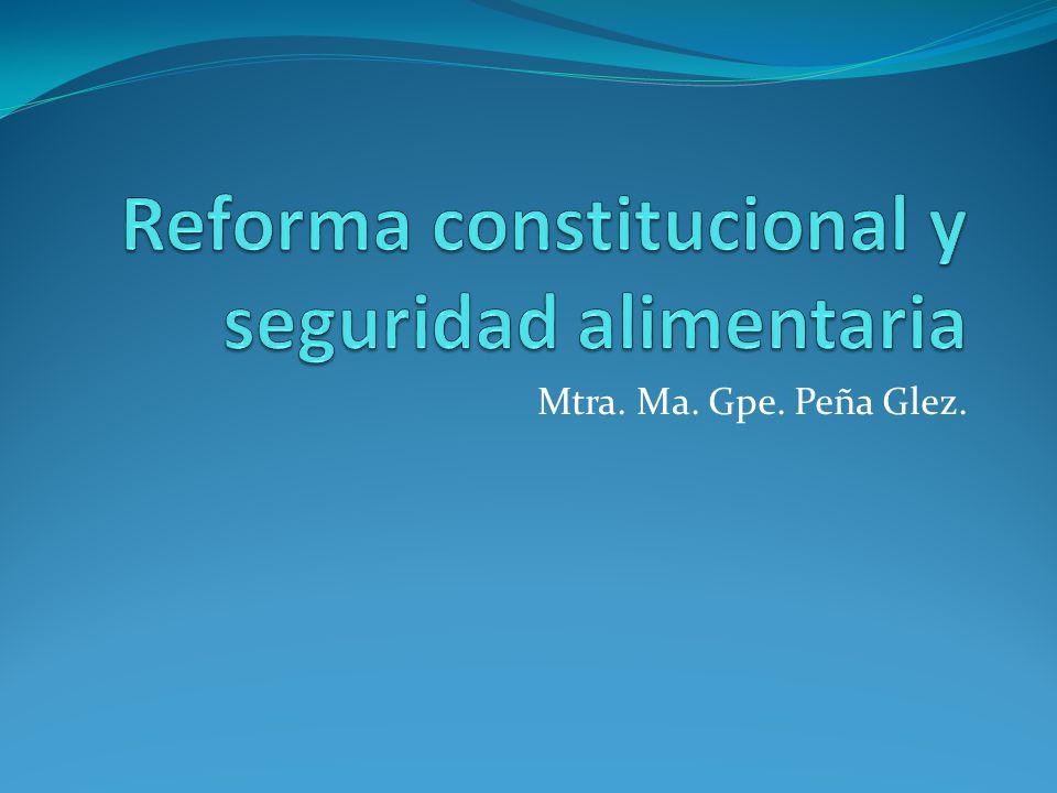 Mtra. Ma. Gpe. Peña Glez.