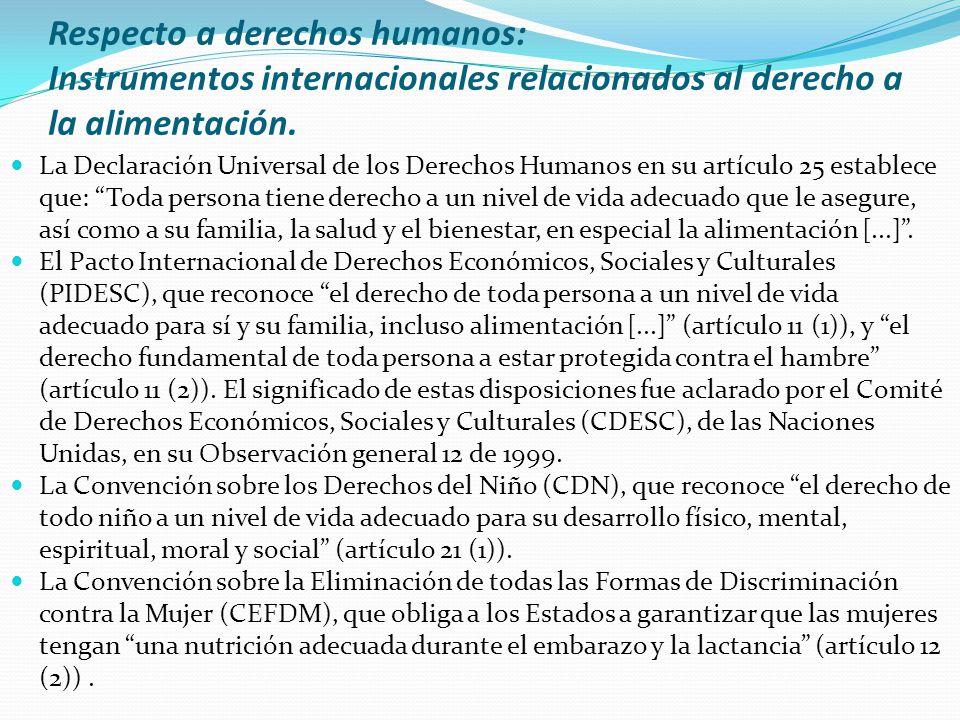 Respecto a derechos humanos: Instrumentos internacionales relacionados al derecho a la alimentación. La Declaración Universal de los Derechos Humanos