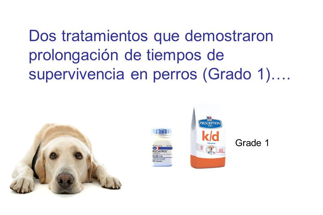 Dos tratamientos que demostraron prolongación de tiempos de supervivencia en perros (Grado 1)….