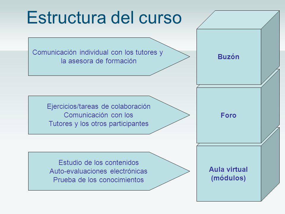 Estructura del curso Aula virtual (módulos) Foro Buzón Comunicación individual con los tutores y la asesora de formación Ejercicios/tareas de colaboración Comunicación con los Tutores y los otros participantes Estudio de los contenidos Auto-evaluaciones electrónicas Prueba de los conocimientos