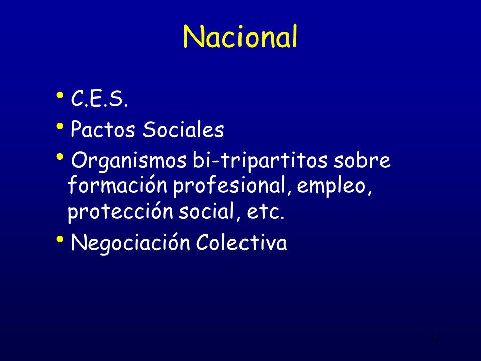 12 Nacional C.E.S. Pactos Sociales Organismos bi-tripartitos sobre formación profesional, empleo, protección social, etc. Negociación Colectiva