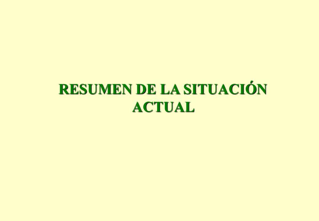 RESUMEN DE LA SITUACIÓN ACTUAL