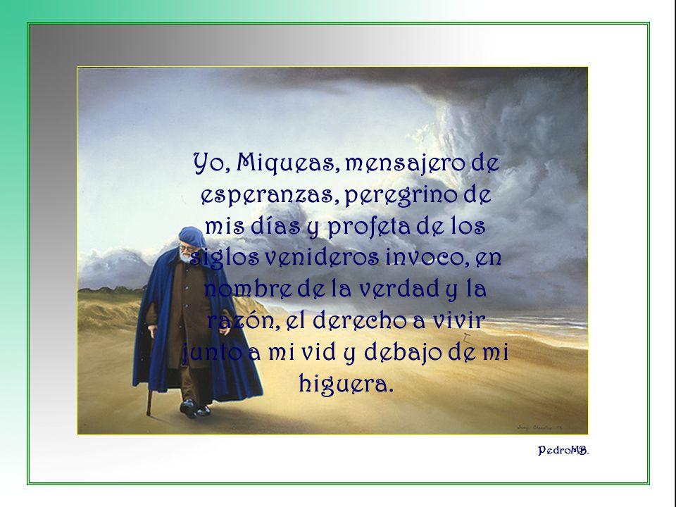 Yo, Miqueas, mensajero de esperanzas, peregrino de mis días y profeta de los siglos venideros invoco, en nombre de la verdad y la razón, el derecho a vivir junto a mi vid y debajo de mi higuera.