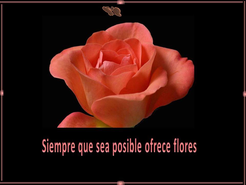 www.vitanoblepowerpoints.net El secreto de la dicha es tener sueños...