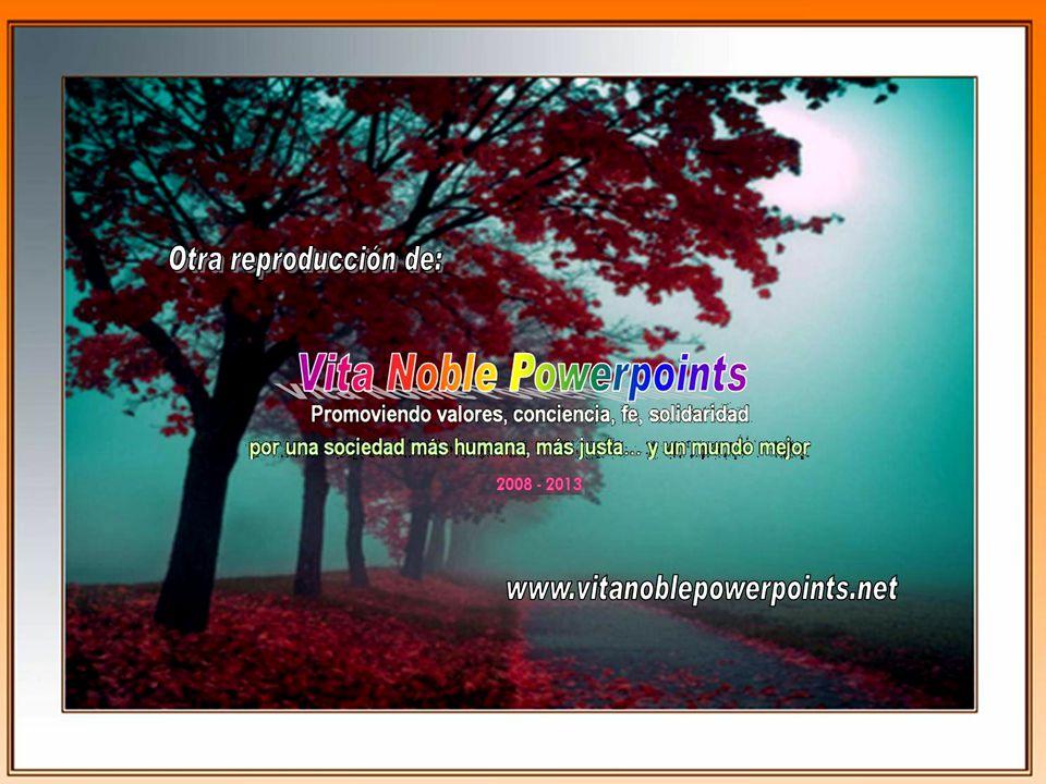 www.vitanoblepowerpoints.net FELIZ DÍA TERESA