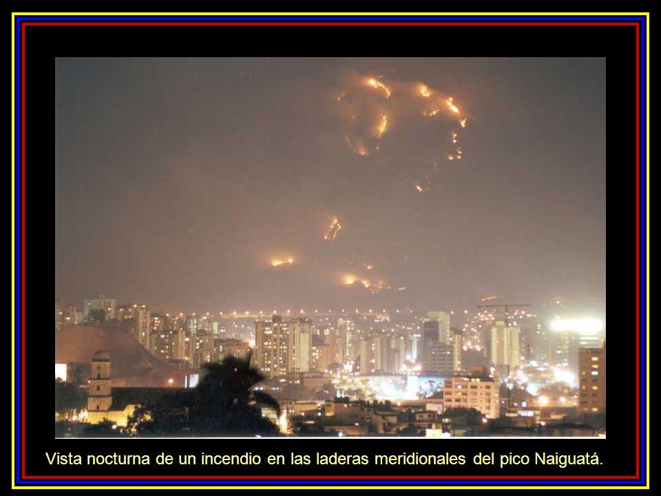 Vista nocturna de un incendio en las laderas meridionales del pico Naiguatá.