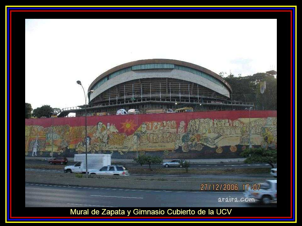 Sector Plaza Venezuela, Estadios Universitarios y Zona Rental UCV