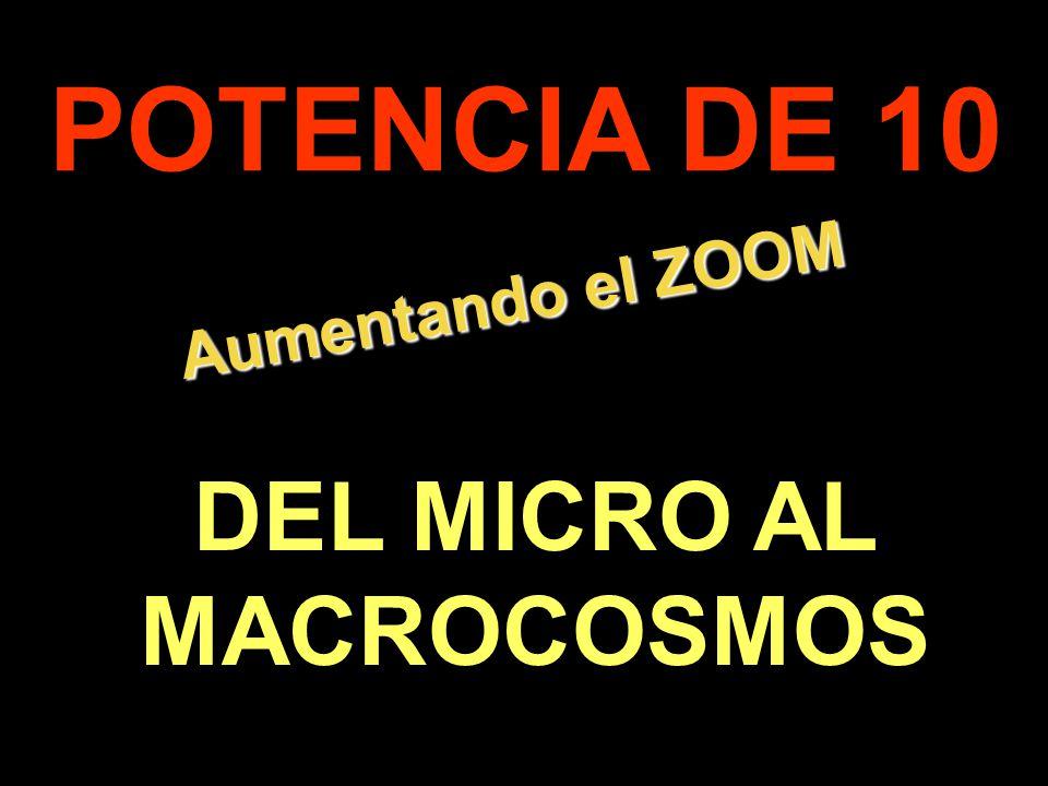 Iniciándose otra presentación en Vitanoblepowerpoints.wordpress.com 3 2 1 VIAJE ALUCINANTE 0