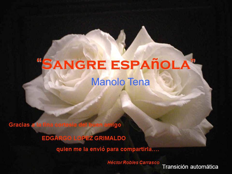 Sangre española Manolo Tena Transición automática Gracias a la fina cortesía del buen amigo EDGARGO LOPEZ GRIMALDO quien me la envió para compartirla….