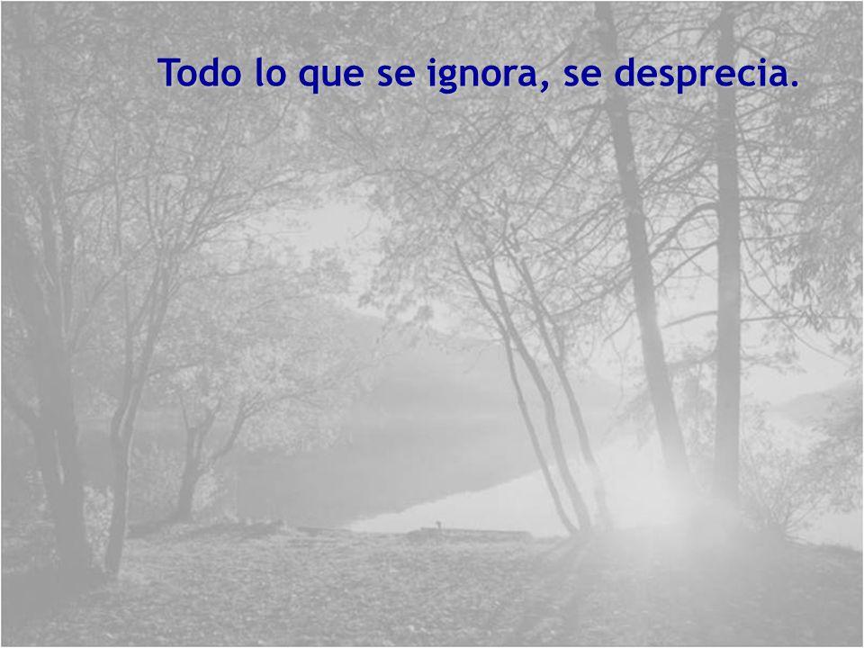 La ignorancia es la noche de la mente: pero una noche sin luna y sin estrellas.