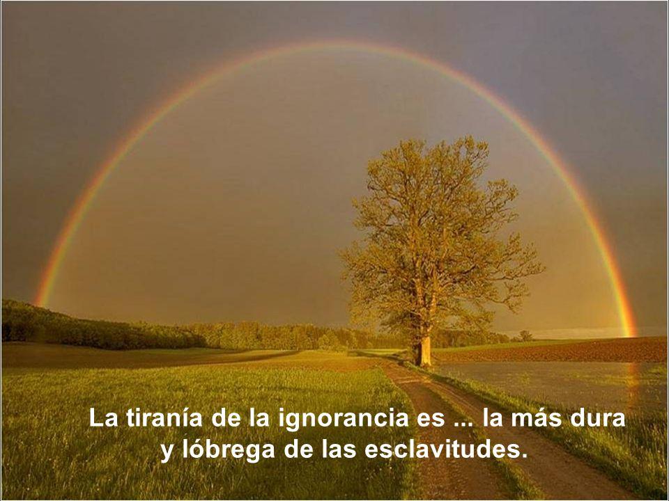 No está bien ocultar la propia ignorancia, sino descubrirla y ponerle remedio.