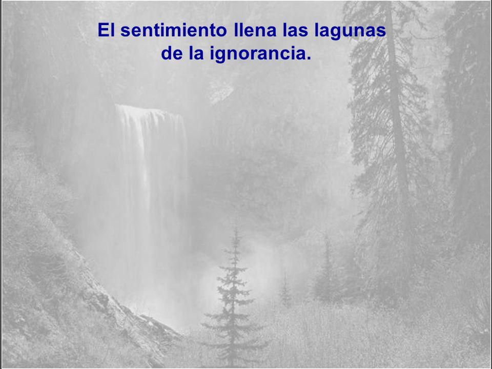 El saber y la raz ó n hablan, la ignorancia y el error gritan.