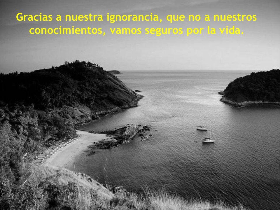 Es ignorancia no saber distinguir entre lo que necesita demostraci ó n y lo que no la necesita.