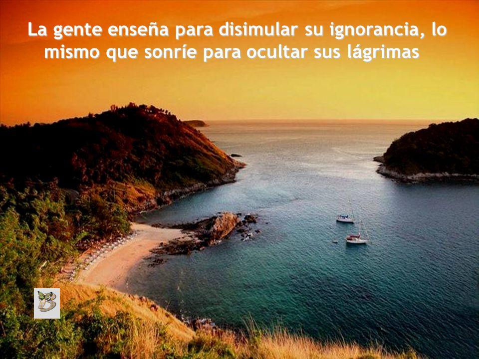 Gracias a nuestra ignorancia, que no a nuestros conocimientos, vamos seguros por la vida.