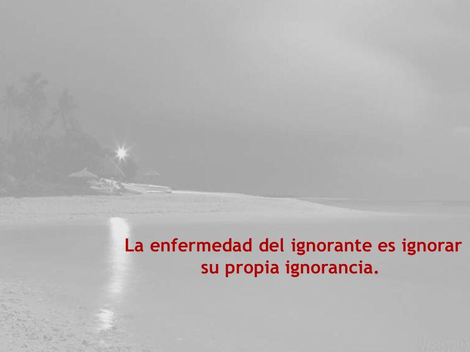 El primer paso de la ignorancia es presumir de saber.