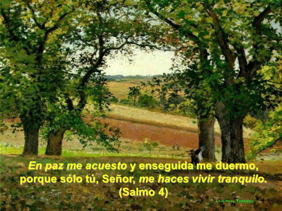 En paz me acuesto y enseguida me duermo, porque sólo tú, Señor, me haces vivir tranquilo.