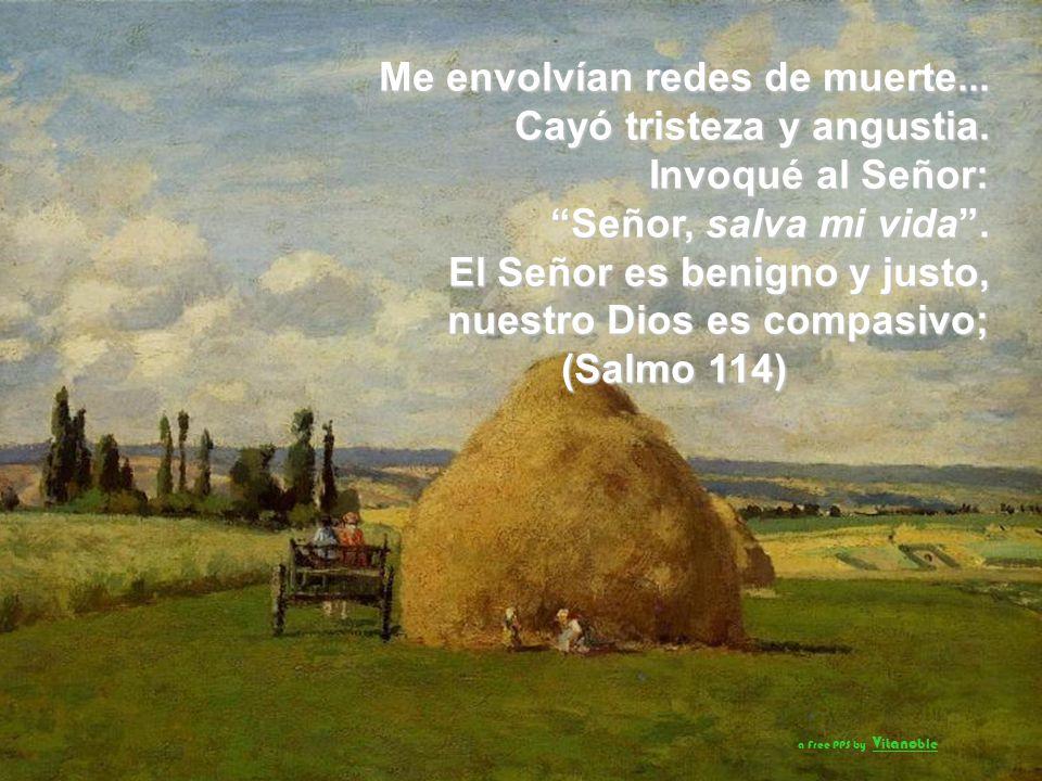 Cuando parece que voy a tropezar… tu misericordia, Señor, me sostiene; cuando se multiplican mis preocupaciones… tus consuelos son mi delicia. (Salmo