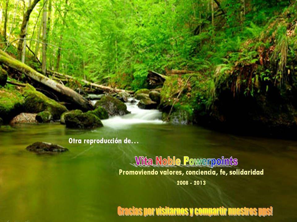 Un pps de Asun Gutierrez en www.vitanoblepowerpoints.net Yo abrazo, delicia pura, tu cara desconocida, idéntica a mi alma. Marguerite Yourcenar