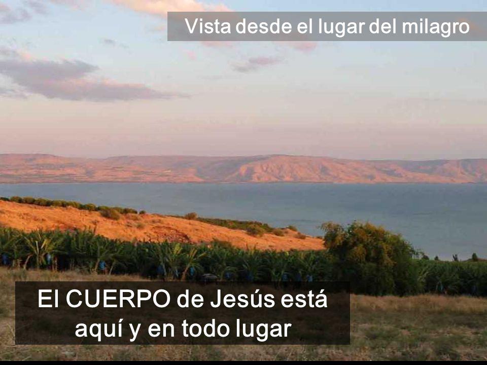 Vista desde el lugar del milagro El CUERPO de Jesús está aquí y en todo lugar