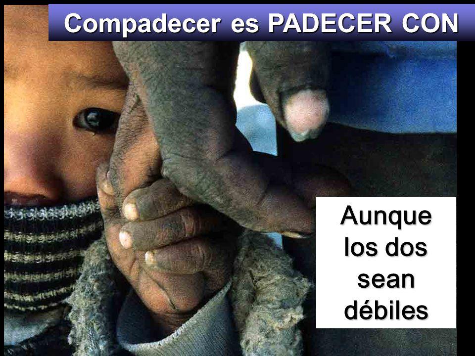 Dichosos los compasivos, porque ellos alcanzarán misericordia.
