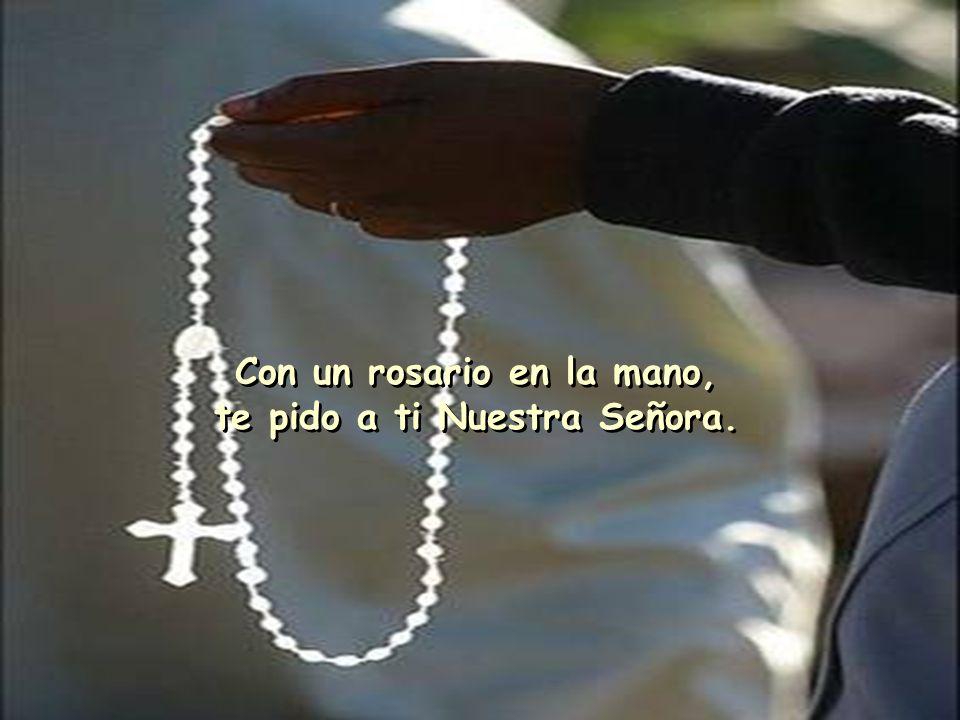 Lleva mi oración a Jesús, Santa Madre que nos guía.