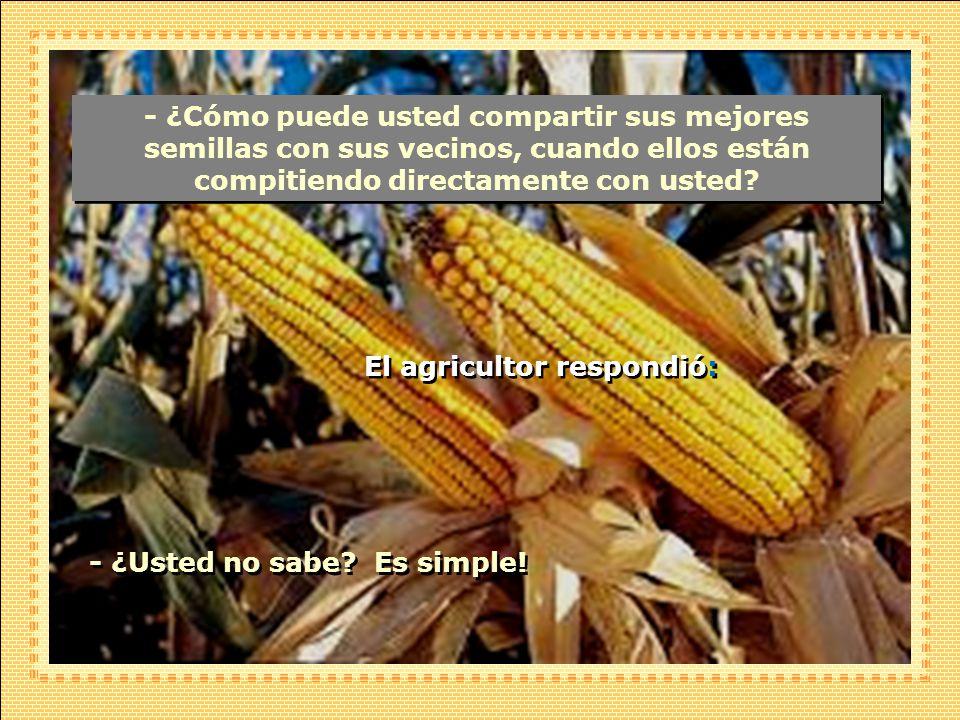 - ¿Cómo puede usted compartir sus mejores semillas con sus vecinos, cuando ellos están compitiendo directamente con usted.