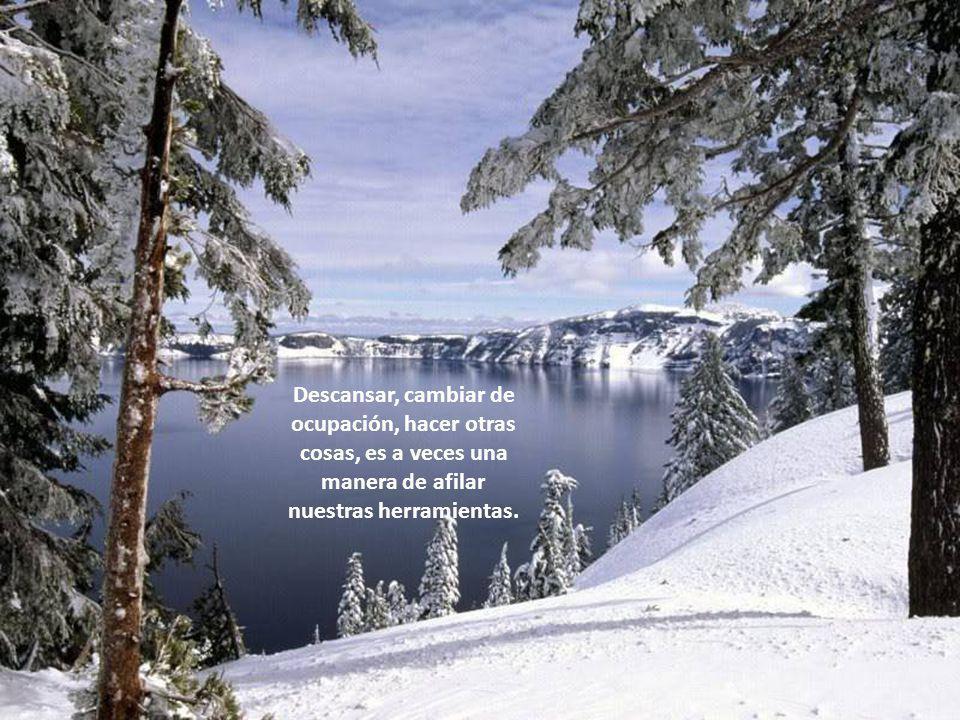 www.vitanoblepowerpoints.net ¿De qué sirve empezar con un enorme esfuerzo, que pronto se volverá insuficiente?