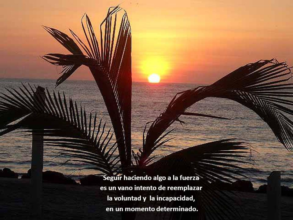 www.vitanoblepowerpoints.net Descansar, cambiar de ocupación, hacer otras cosas, es a veces una manera de afilar nuestras herramientas.