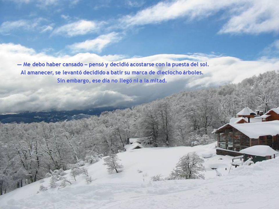 www.vitanoblepowerpoints.net Por la ma ñ ana se levant ó antes que nadie y se fue al bosque. A pesar de todo el empe ñ o, no consigui ó cortar m á s q
