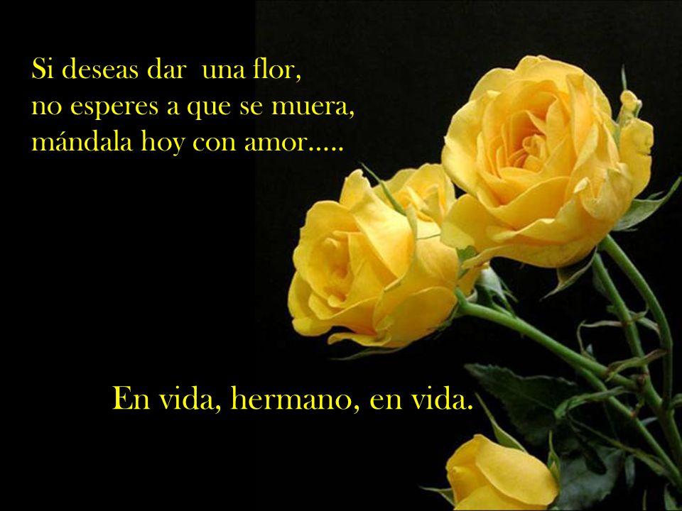 Si deseas dar una flor, no esperes a que se muera, mándala hoy con amor…..
