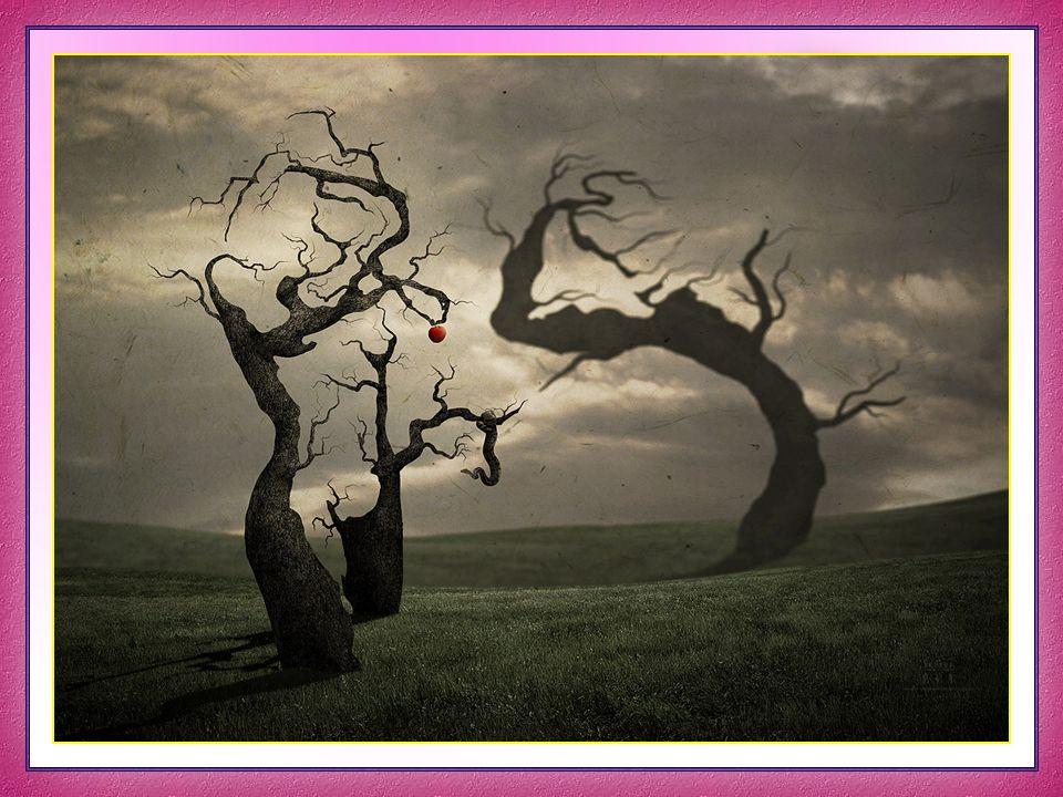 Vita Noble Powerpoints Una vez, andando por un lugar en noche borrascosa, vi una mujer a la bermeja luz del relámpago que, de pie sobre una roca, elevaba los brazos al cielo en doliente imprecación de duelo.
