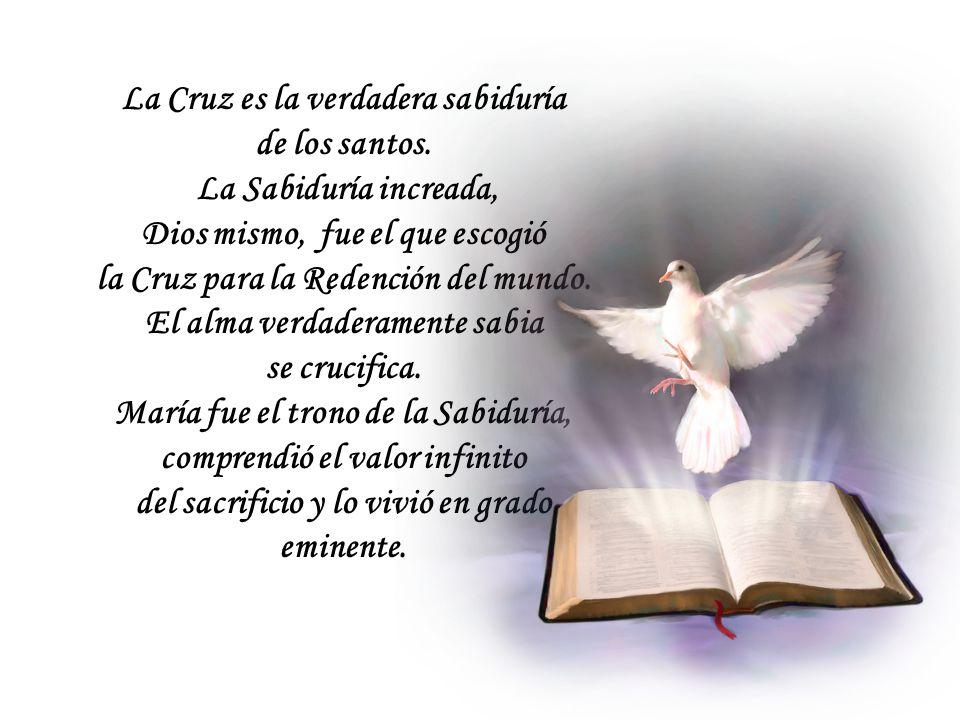 La Cruz es la verdadera sabiduría de los santos.