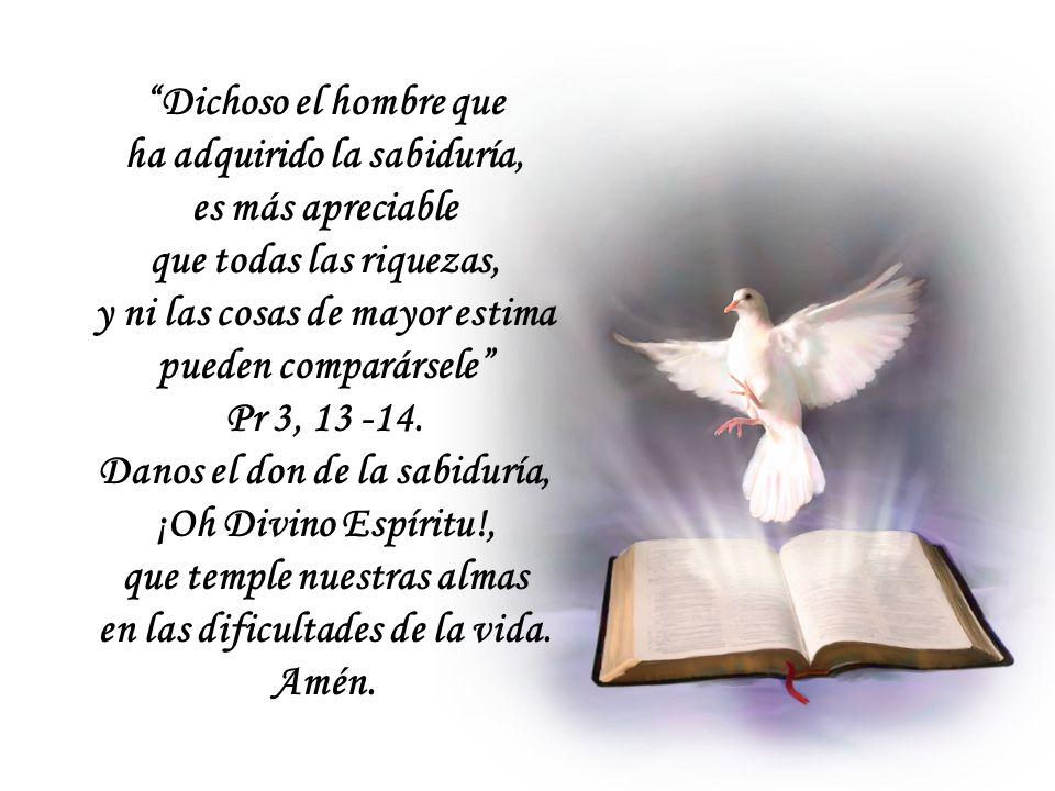 ¡Oh Sabiduría, dichosa el alma que te posee! La Sabiduría que desciende de arriba – dice el apóstol Santiago – además de estar llena de pureza, es pac