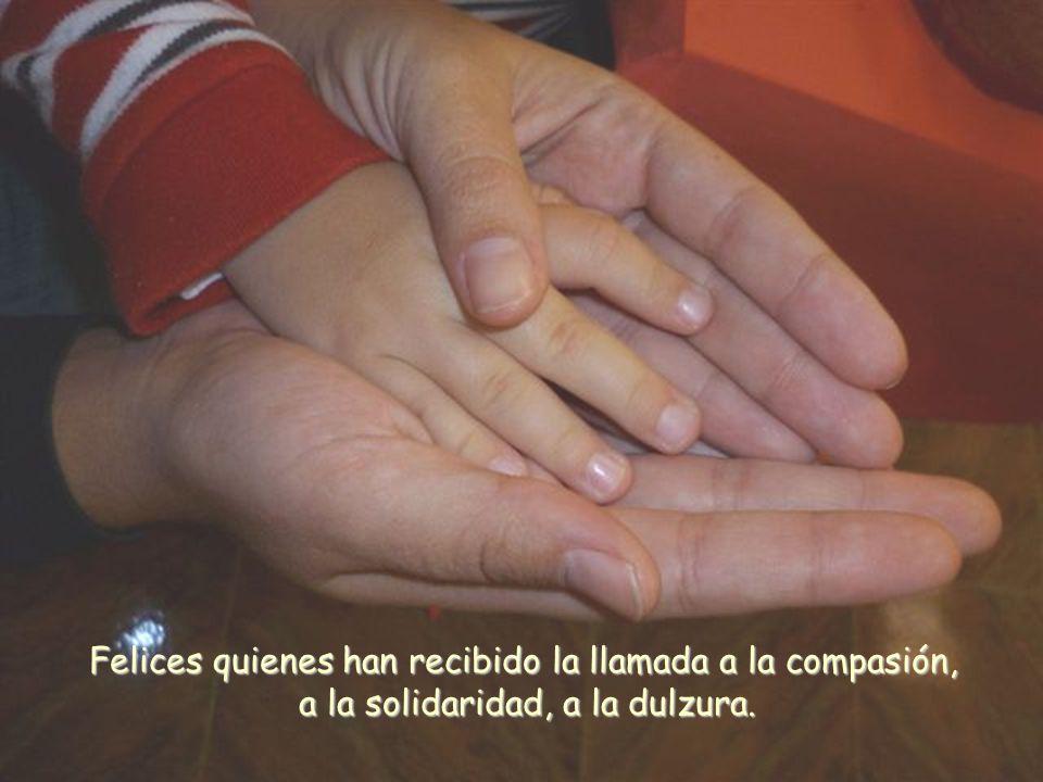 Felices quienes han recibido la llamada a la compasión, a la solidaridad, a la dulzura.