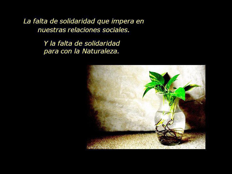 www.vitanoblepowerpoints.net Además de la crisis financiera, nos encontramos también con la crisis ambiental.