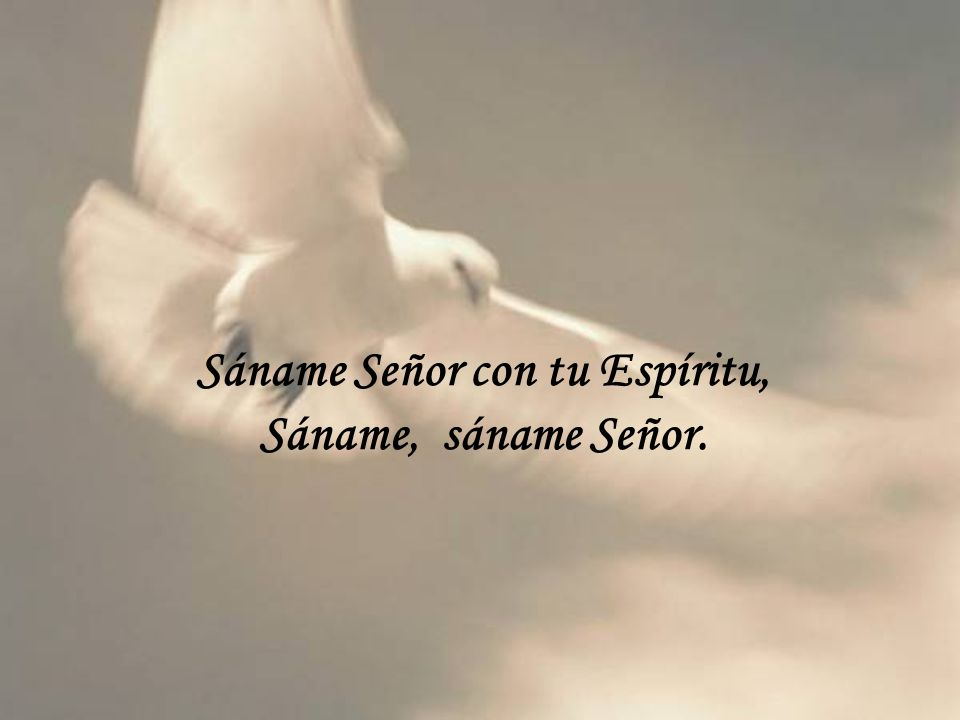 Sáname Señor con tu Espíritu, Sáname Señor con tu Espíritu.