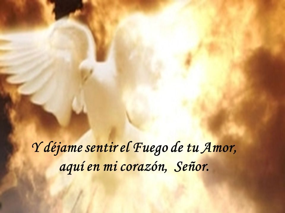 Sáname Señor con tu Espíritu, Sáname, sáname Señor.