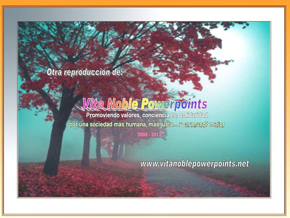 Otra reproducción de... www.vitanoblepowerpoints.net Todo mi amor eres tu Todo mi amor eres tu