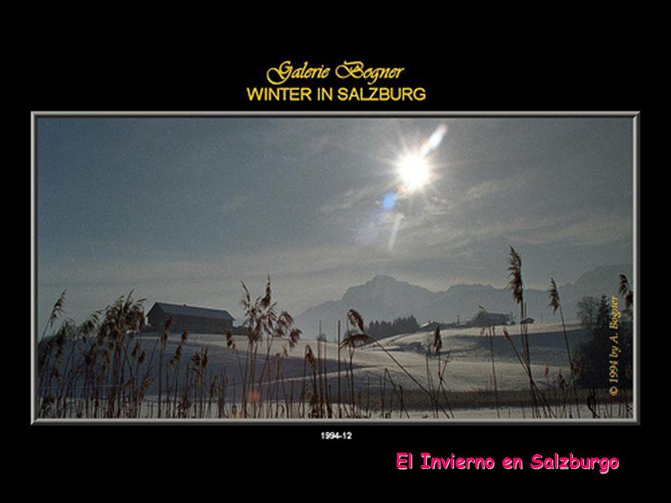 Otra edición y reproducción de... www.vitanoblepowerpoints.net Centro de la ciudad de Salzburgo