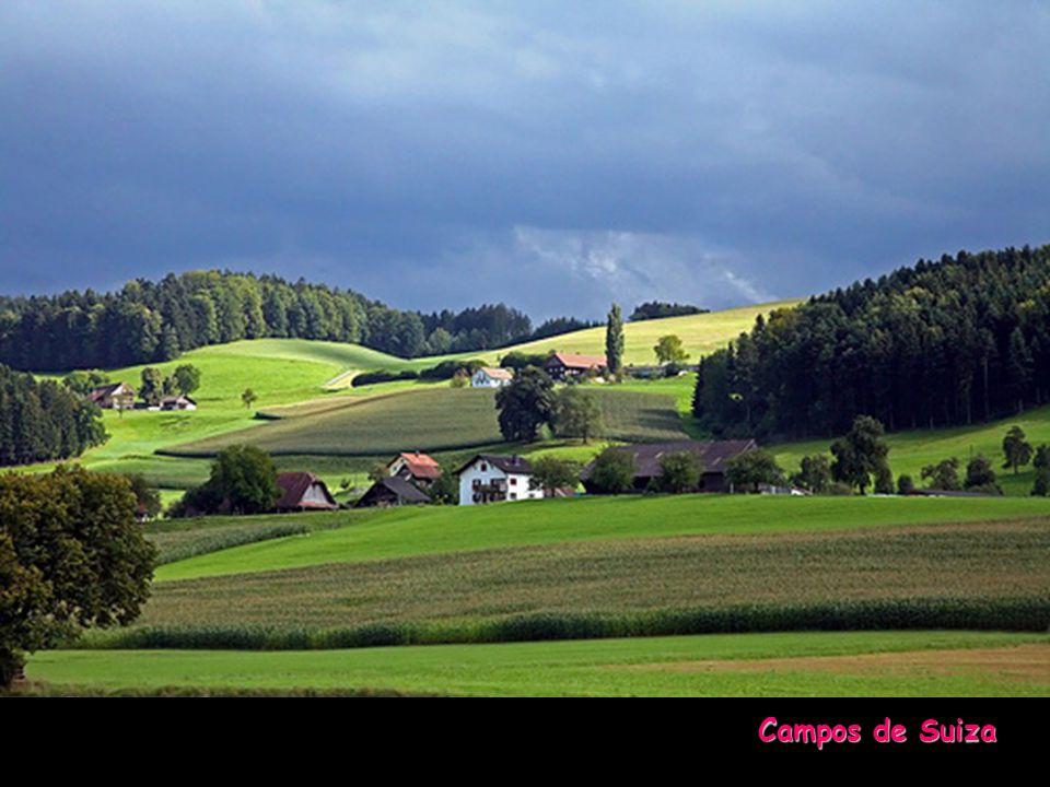Otra edición y reproducción de... www.vitanoblepowerpoints.net Alpes Suizos