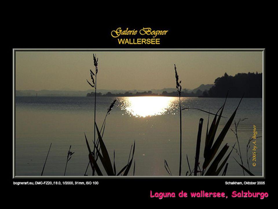 Otra edición y reproducción de... www.vitanoblepowerpoints.net Salzburgo de día