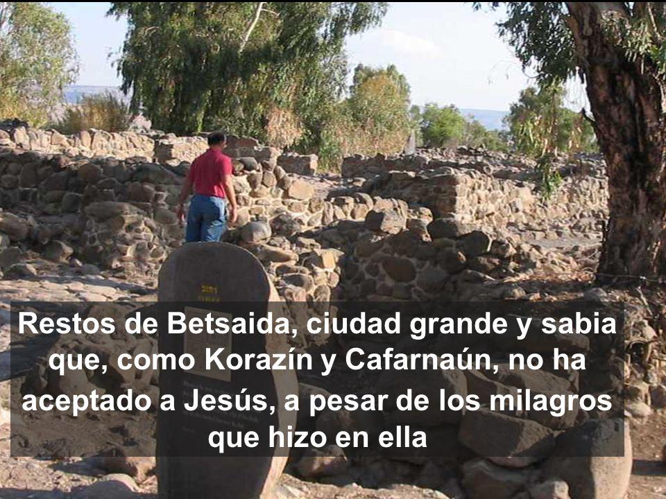 En lugar de disputar con la generación que lo desprecia, Jesús se acerca a los humildes La 3a PARTE del evangelio de Mateo c11-13, está centrada en el