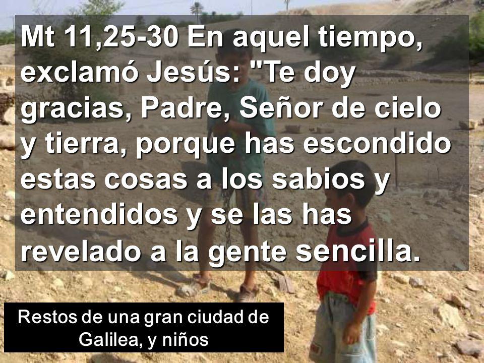 Mt 11,25-30 En aquel tiempo, exclamó Jesús: Te doy gracias, Padre, Señor de cielo y tierra, porque has escondido estas cosas a los sabios y entendidos y se las has revelado a la gente sencilla.