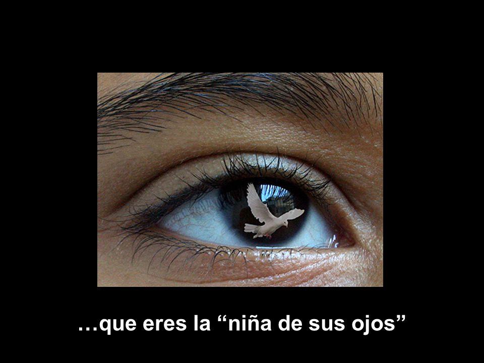 www.vitanoblepowerpoints.net …que eres la niña de sus ojos
