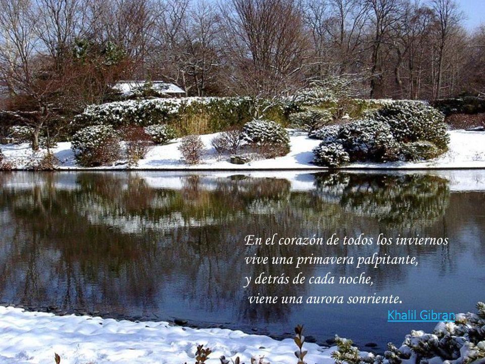 En el corazón de todos los inviernos vive una primavera palpitante, y detrás de cada noche, viene una aurora sonriente.