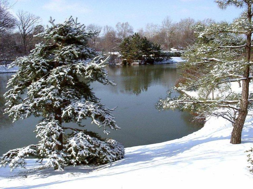 ¡ Y yo te amo, invierno.