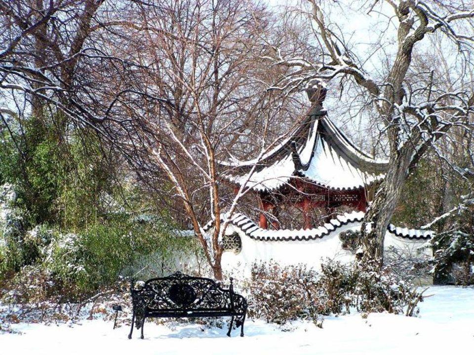 Invierno, yo te amo y soy la primavera...
