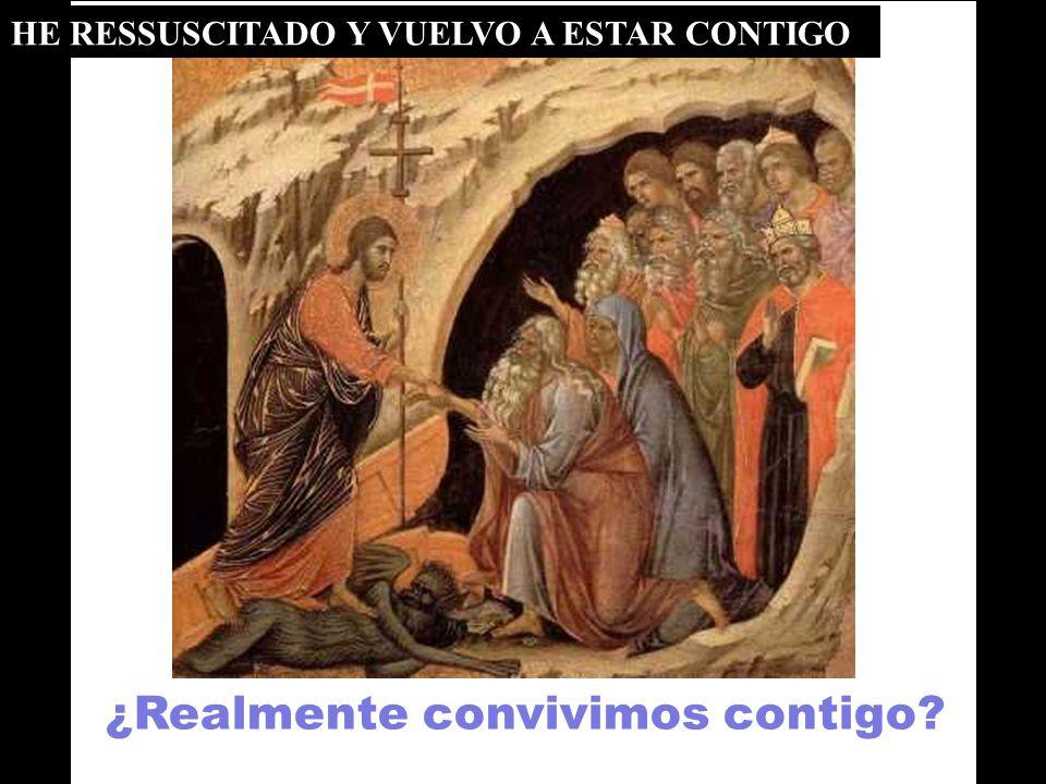 Tú eres la PALABRA ETERNA que convive con los hombres. Toda la CREACIÓN lo dice, silenciosamente (salmo18). CONVIVIENDO CON JESÚS 6ª lectura